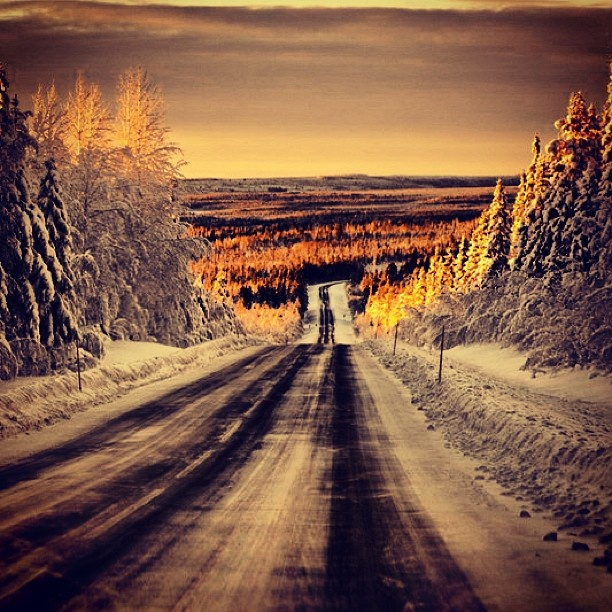 Winter road. #norrland #Arvidsjaur #winter #hthelg - @stighelgesen- #webstagram