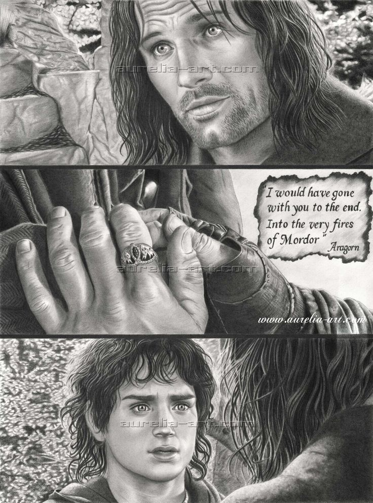 Correct Order Of Lord Of The Rings Trilogy