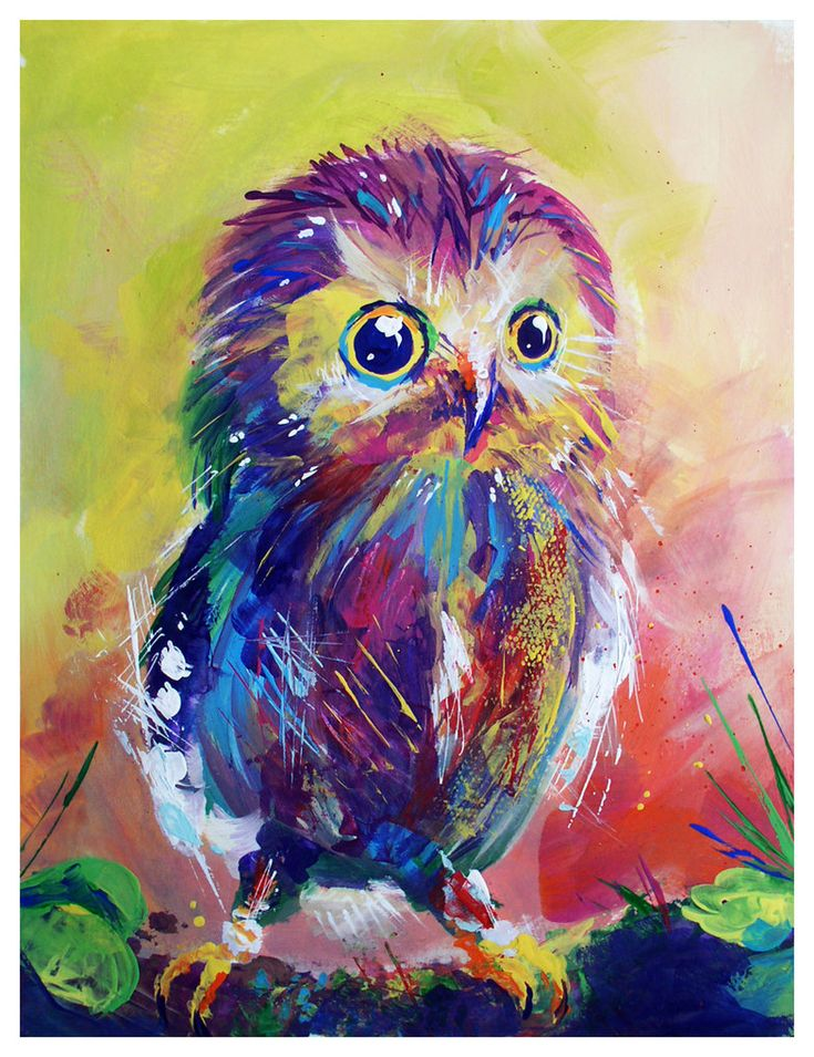 Colorful Owl By Too Much Color Owl Love Pinterest