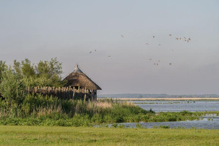 Fiets een mooie ronde om Nationaal Park Lauwersmeer en geniet van de dorpen en bijzondere vogels onderweg.