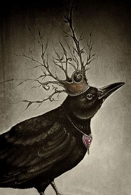 Crows Ravens:  A Raven Queen...                                                                                                                                                      More