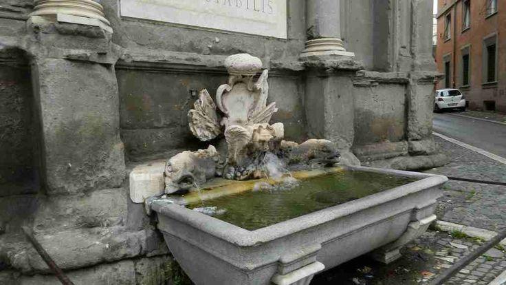 Fontana Giulio III Ammannati, Via Flaminia