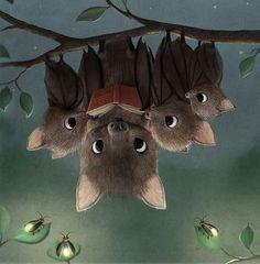 Bats - cuteness                                                                                                                                                                                 Mais
