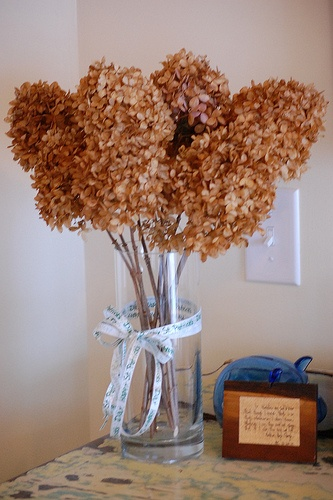 Best images about dried hydrangeas on pinterest