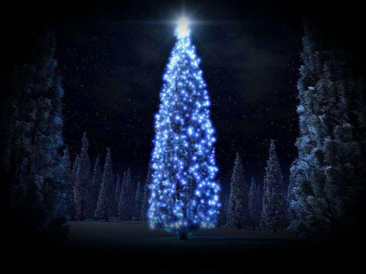 Wesołych świąt! I SZCZĘŚLIWEGO NOWEGO ROKU!