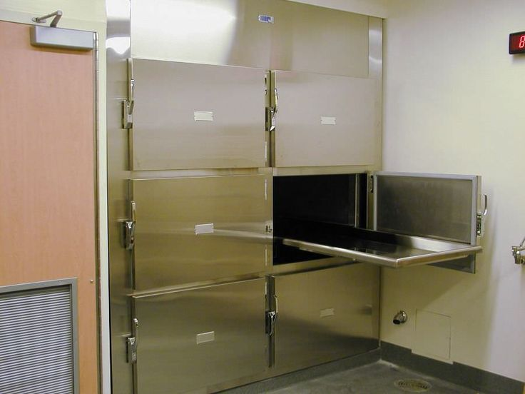 22 best Veterinary Morgue images on Pinterest Freezer, Clinic - morgue assistant sample resume