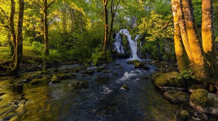 Summer in the Forest - Sunset at the forest waterfall.