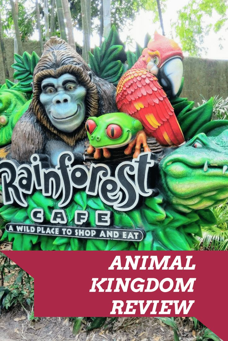 Review of The Rainforest Cafe at Animal Kingdom Park At Walt Disney World Florida. Dining plans at WDW with this dining experience at Animal Kingdom