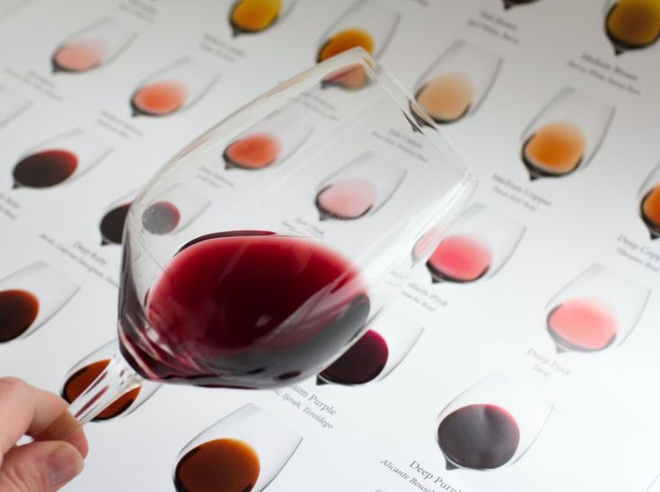 Assessing the color in wine.