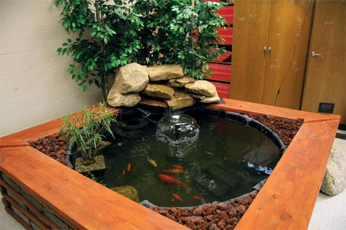 Indoor fish pond i 39 ll have to add the stones on the side for Indoor koi fish pond