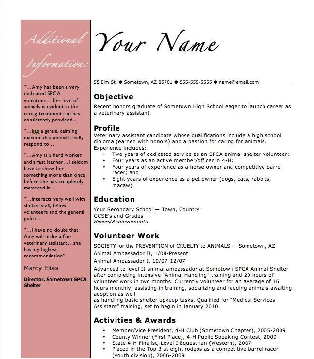 Pin By Anjali On Portfolio Ideas For Office Student Resume