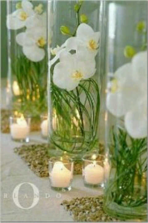 White orchids submerged in vases