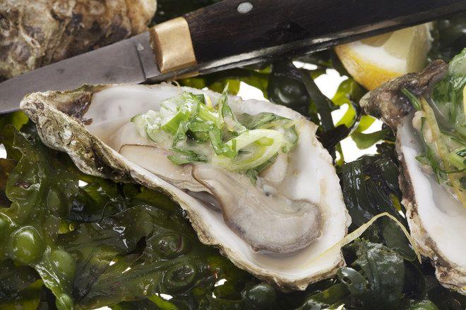 Huîtres chaudes à la fondue de poireau