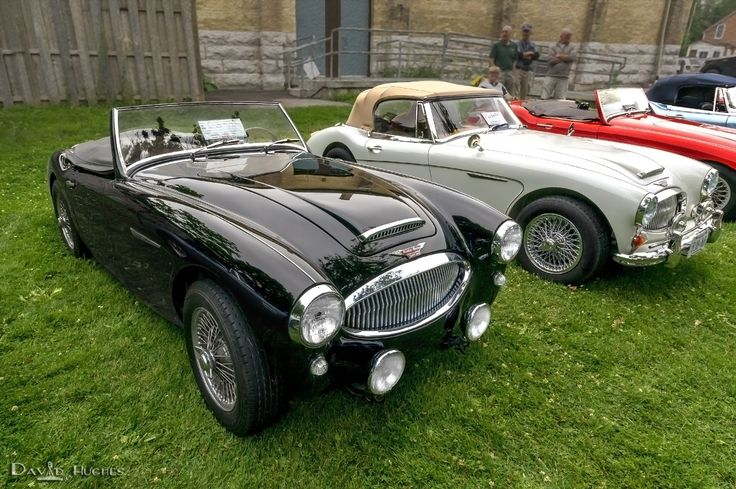 1000 images about austin healey on pinterest grand prix auction and vehicles. Black Bedroom Furniture Sets. Home Design Ideas
