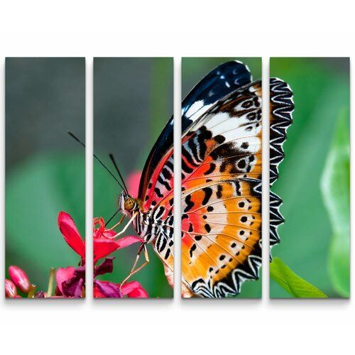 Colourful Butterfly On A Flower Photographic Print Multi Piece Image On Canvas East Urban Home Wayfair Colorful Butterflies Kids Art Wall Frames Lake Wall Art