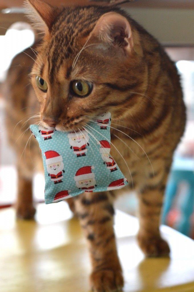 Catnip Pillow Toy DIY featuring Santa Express fabric designed by Doodlebug Designs for Riley Blake Designs #jedicraftgirl #iloverileyblake #santaexpress #rileyblakedesigns