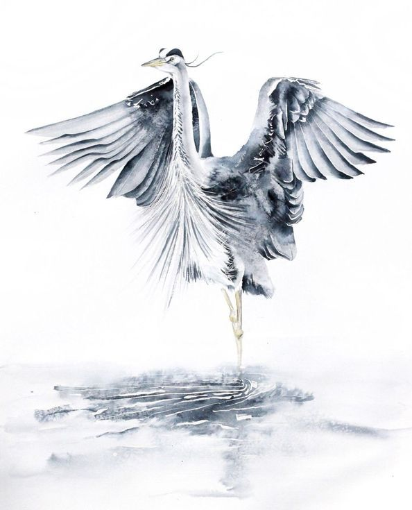 Buy GREAT BLUE HERON bird, birds, animals, wildlife watercolour painting, Watercolour by Karolina Kijak on Artfinder. Discover thousands of other original paintings, prints, sculptures and photography from independent artists.
