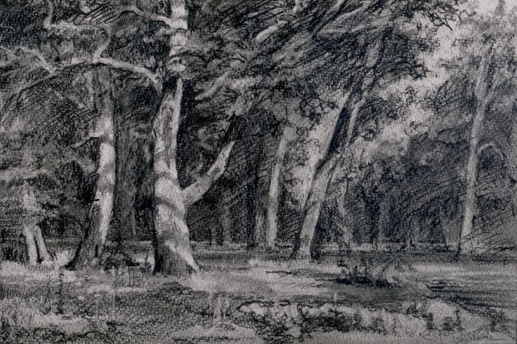 Author: Witold Kubicha. Drawing inspired by the image of Ivan Shishkin.