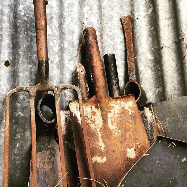 Forgotten tools #rust #rustic #strathnairnartsgallery #cazzlphotos #amazing_shots #from_your_perspective #winnewscanberra #abcmyphotoi #ABCCanberra #wearecbr  #australian #discovercanberra #canberra #visitcanberra #thiscanberranlife #canberratimes #igerscanberra #cbr #canberralife #canberrasecrets