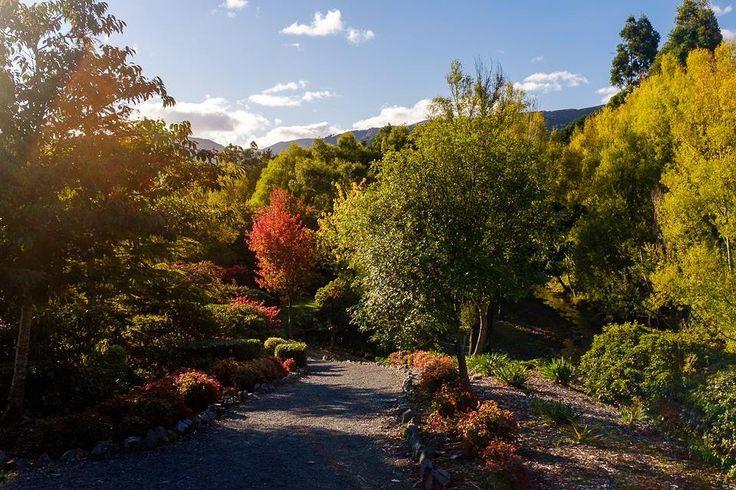 Sunny autumn day in botanical garden