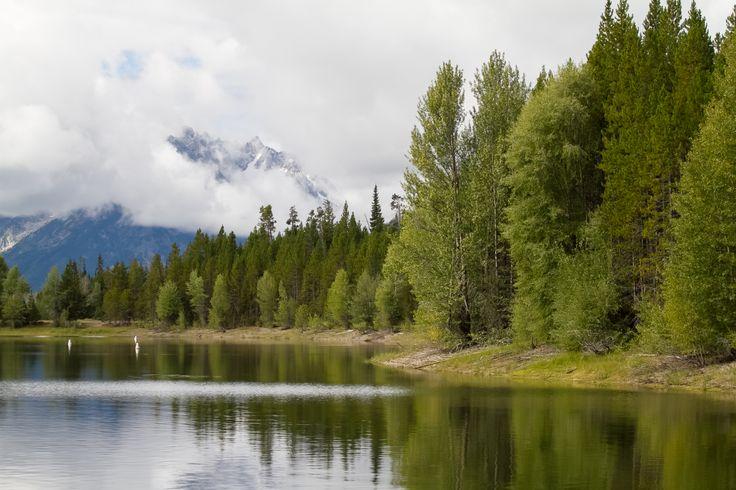 Yellowstone #yellowstone #nationalpark #lake #trees http://hikersbay.com/go/usa