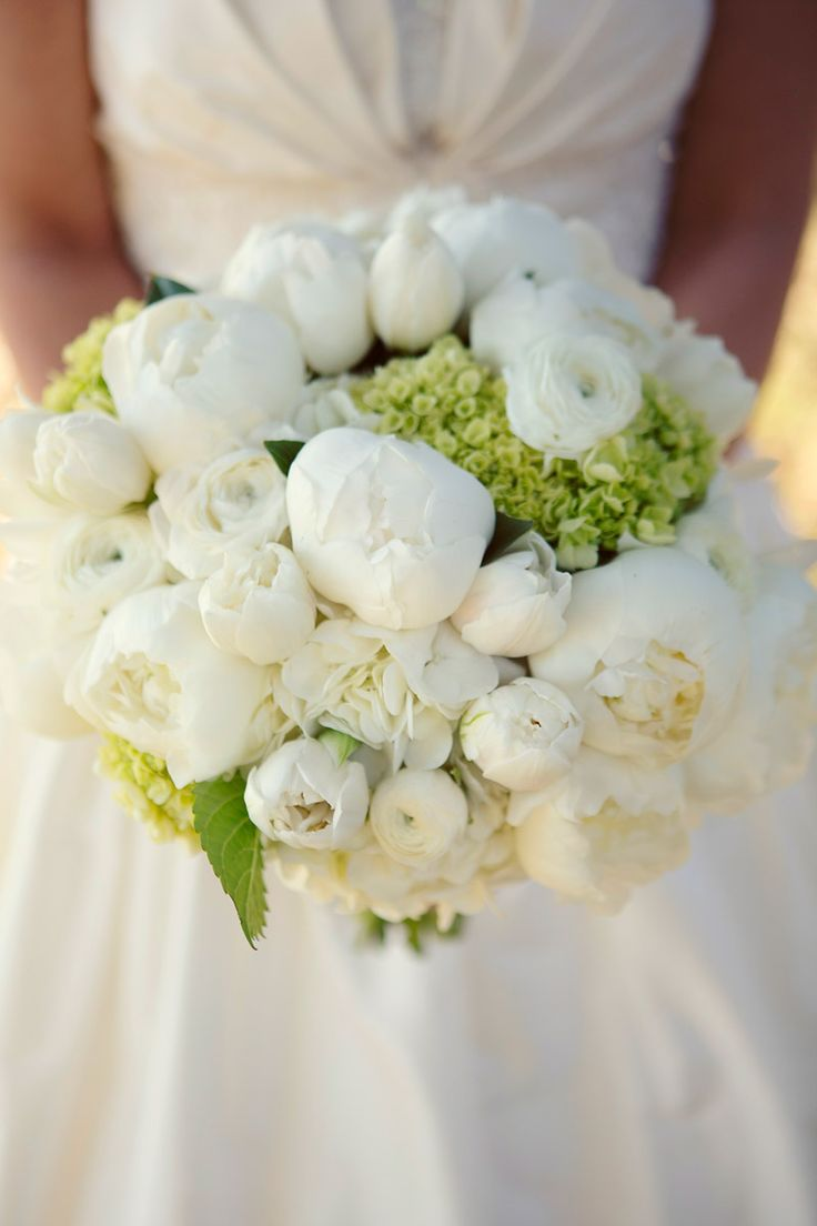 Sheer Elegance | Dallas Wedding and Event Florist | Dr Delphinium