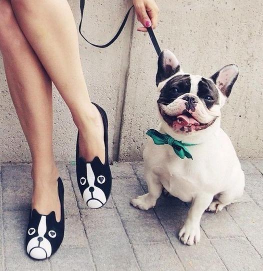 Are Bulldogs Fashion's New Favorite Accessory?