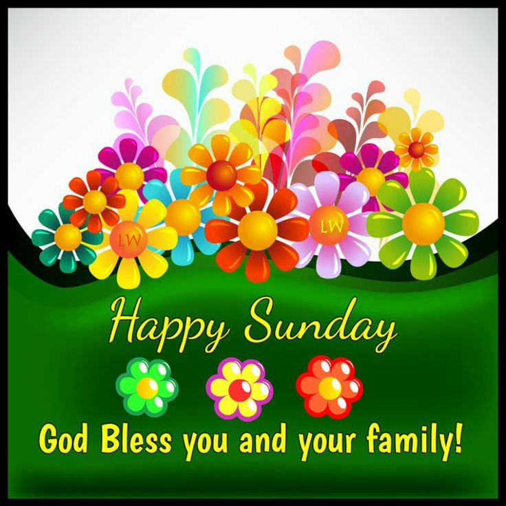 Happy Sunday! God bless you and your family!
