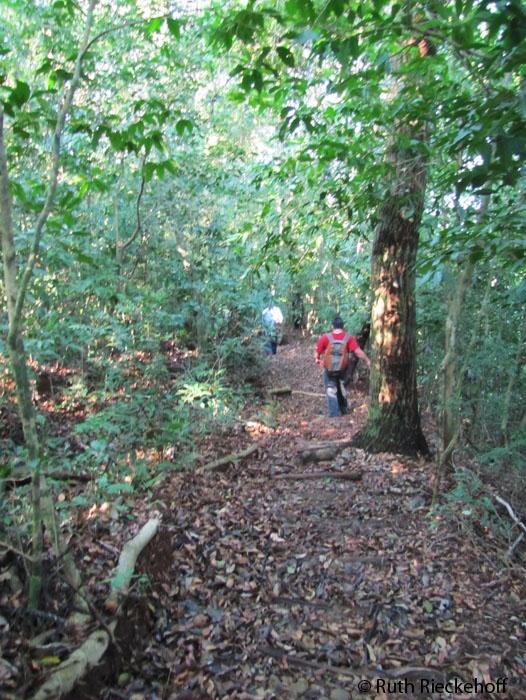 Hiking towards the Ixcanal RIver, El Imposible National Park, El Salvador
