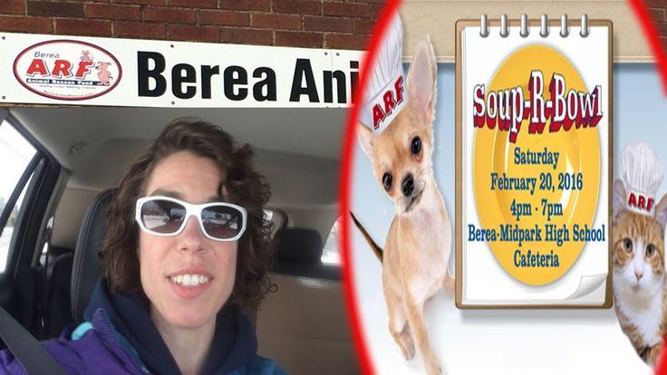 12++ Berea animal rescue fund ideas in 2021