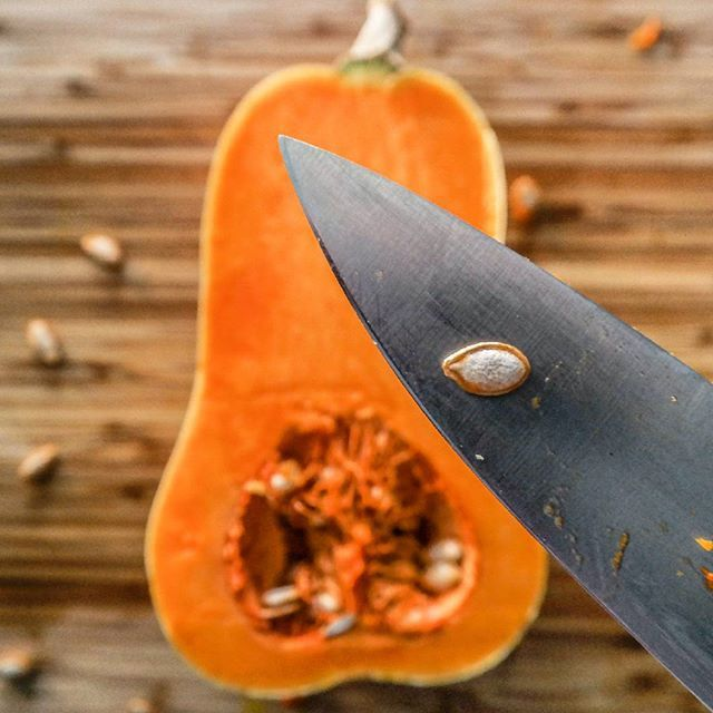 Butternut squash on the board! Packed with vitamin A and Calcium is a super boost to a dog's diet.