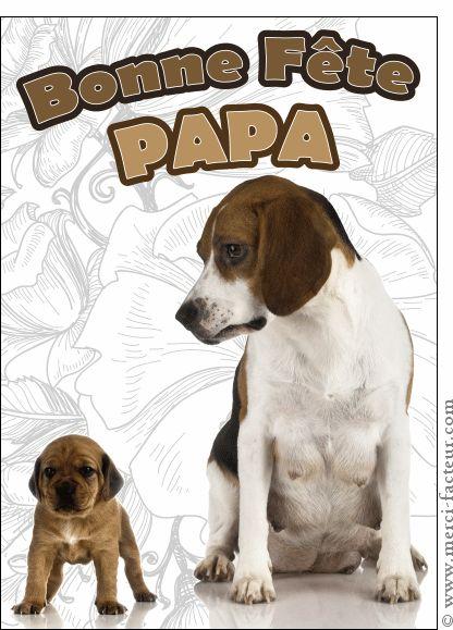 La fête des pères arrive dans quelques jours...  Envoyez en quelques clics une jolie carte :) http://www.merci-facteur.com/carte-fete-des-peres.html #carte #fetedesperes #papa Carte F�te des p�res des toutous pour envoyer par La Poste, sur Merci-Facteur !