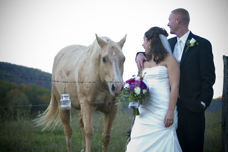 wedding forums tell your davids bridal experience abcbacd