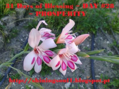 ShiningSoul: Day #28 ~ 31 Days of Blessing: PROSPERITY /  Dia #...
