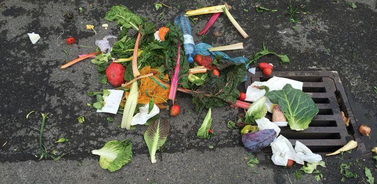 Desperdició  Color y verdura.