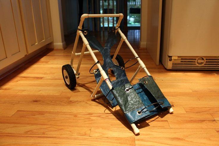 Il construit un adorable fauteuil roulant pour son chien devenu handicapé