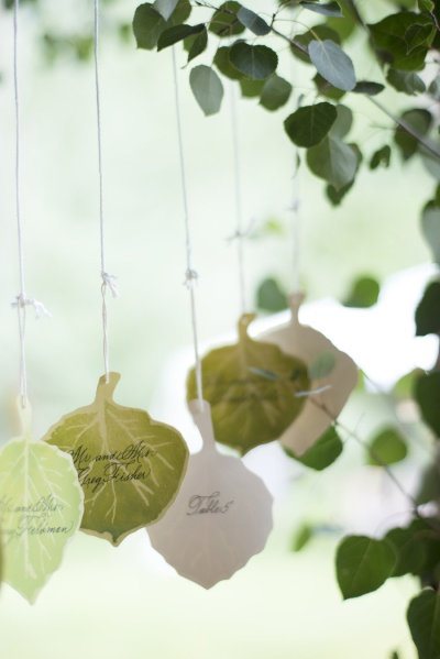 Birch leaves/ Escort cards - Papergoods: Express Yourself Basalt - Aspen Wedding from Kate Holstein + Bluebird Productions