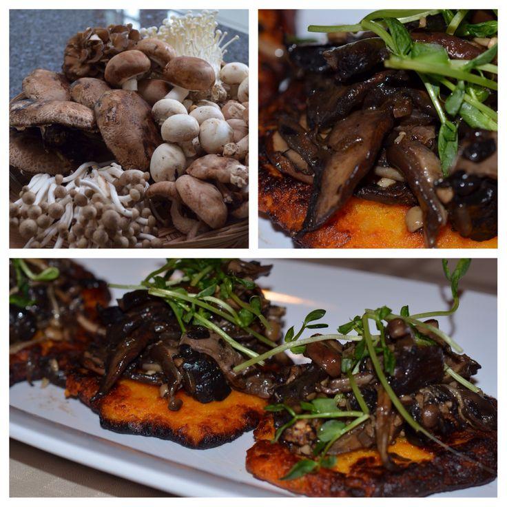 Vegan mushroom fricassee on sweet potato cake