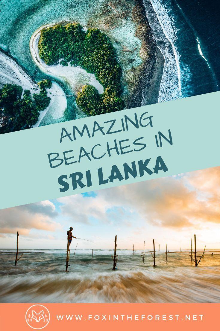 The Perfect Beach Adventures in Sri Lanka's Southern Coast