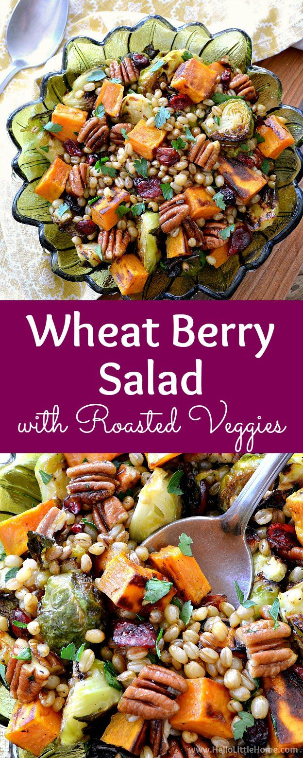 This delicious Wheat Berry Salad recipe is full of healthy roasted veggies and warm flavors! It's the perfect entree or side dish for a fall or winter meal!