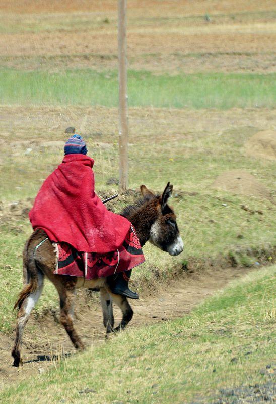 Typical transportation . Lesotho