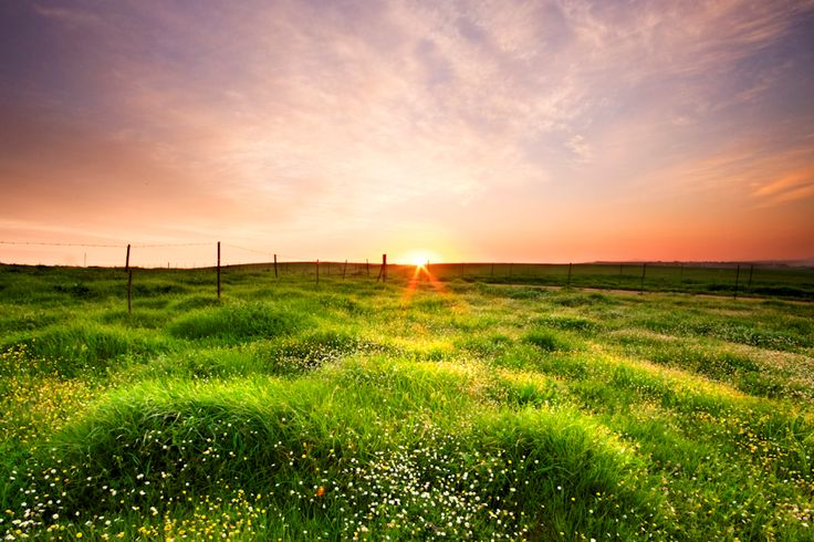 beautiful sunsetThoughts, At Home, A New Beginning, Nature Photos And God Quotes, Beautiful Sunsets, Bible, Places, Mornings, Fields