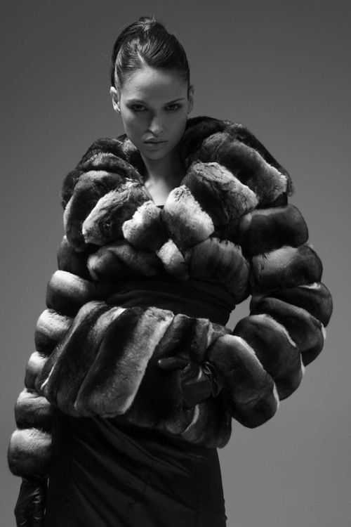Romagna Furs Chinchilla Fur Jacket 4.jpg 500×750 pixels