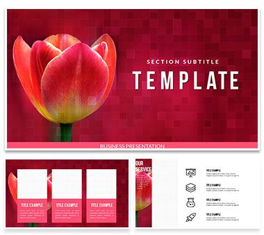 Tulip Bulbs for Sale PowerPoint templates