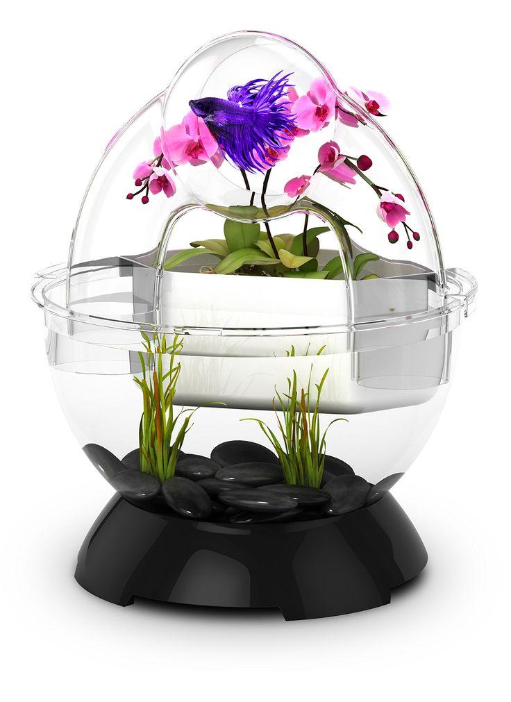 Amazon.com : BioBubble Wonder Bubble Tunnel Kit, Black : Pet Supplies