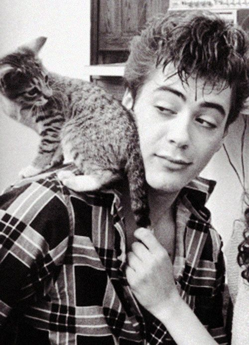 Young RDJ and a kitten