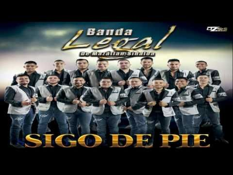 BANDA LEGAL DE MAZATLAN SINALOA - VAMOS A SEGUIR LA BORRACHERA