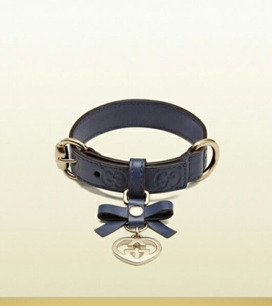 Best 25+ Gucci dog collar ideas on Pinterest | Girl dog ...