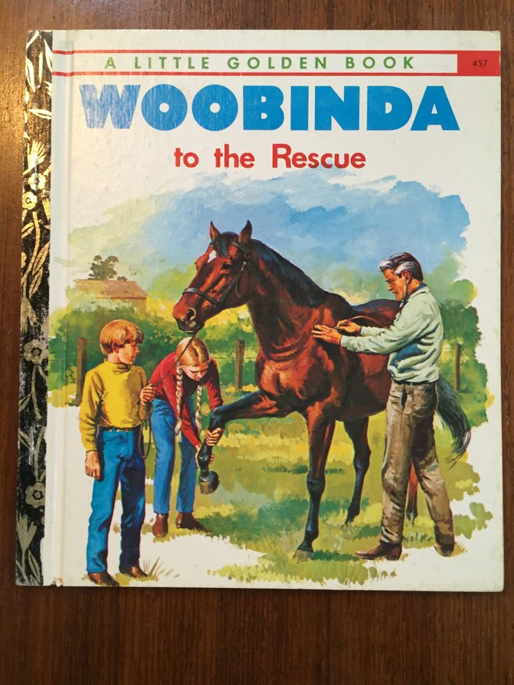 Woobinda to the Rescue  457 Little Golden Book LGB by Victor Barnes  Illustrated by Walter Stacypool Vintage 1970s Australian LGB by weseatree on Etsy