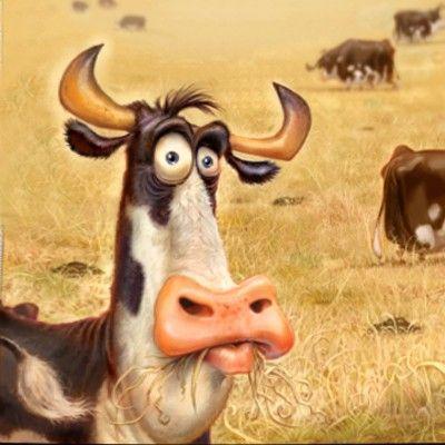 Αποτέλεσμα εικόνας για funny cows